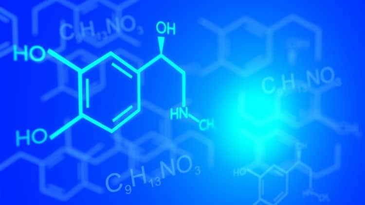 organic chemistry topics for beginners